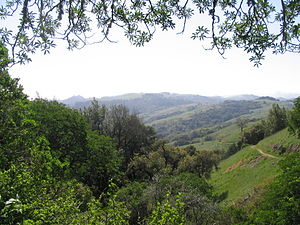 Midpeninsula Regional Open Space District - Monte Bello Open Space Preserve.