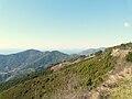 Monterosso al Mare-panorama-costa2.jpg