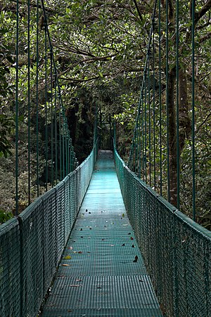 English: suspension bridge in Selvatura Park, ...
