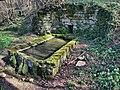 Montfaucon, la fontaine de Janniet.jpg