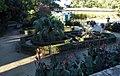 Montpellier - Jardins des plantes 3.jpg
