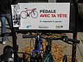 Montréal Mont-Royal 299 (8337484367).jpg