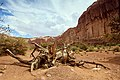 Monument Valley (35176878252).jpg