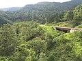 Morino, Shiraoi, Shiraoi District, Hokkaido Prefecture 059-0911, Japan - panoramio (4).jpg
