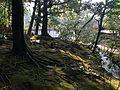Moss and stream near Shotozaka Slope in Kenroku Garden.JPG
