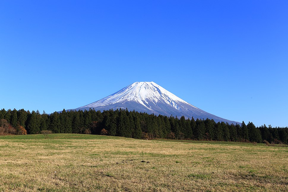 Mount Fuji from meadow