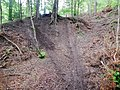 Mountainbike-Downhill-Strecke - panoramio (2).jpg