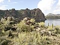 Mt. Pinter Base Loop, Tonto National Forest, Butcher Jones Trail, Fort McDowell, AZ 85264, USA - panoramio (32).jpg