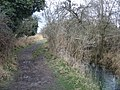 Muddy footpath - geograph.org.uk - 745073.jpg