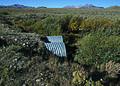 NRCSMT01031 - Montana (4911)(NRCS Photo Gallery).jpg