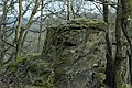 Naturdenkmal-in-bad- schwalbach.jpg