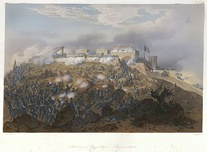 Nebel Mexican War 10 Chapultepec Pillow.jpg