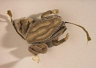 Needlecase - Image: Needlecase, 'Frog' LACMA AC1998.85.1 (2 of 2)