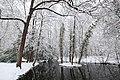 Neige à Saint-Rémy-lès-Chevreuse le 7 février 2018 - 33.jpg