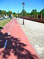 Network of city bike paths leading to the university.jpg