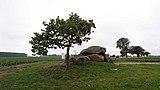 Neu-Gaarz-Dolmen-a.jpg