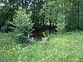 Nevelsky District, Pskov Oblast, Russia - panoramio (27).jpg