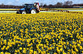 New Holland TL 90 and field sprayer 2.jpg