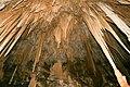 Newdegate cave-Tasmania-Australia07.JPG