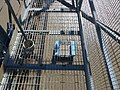 Newport Transporter Bridge (16634526344).jpg