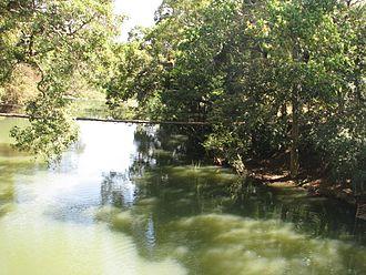 Nisargadhama - The Old bridge