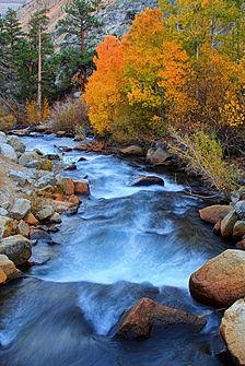 Bishop creek inyo county wikipedia for Bishop creek fishing