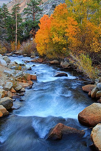 Bishop Creek (Inyo County) - North Fork Bishop Creek in the Fall
