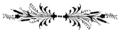 Nsr-okrasek-str548.png