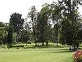 Nuwara Eliya, Botanical Garden - panoramio.jpg