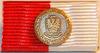 Oderflut Medaille 1997 Brandenburg Bandschnalle.png