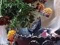 Ofrenda de Día de Muertos-Sahumerio 1.jpg