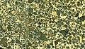 Olivine melilitite lapillistone (Hegau Volcanic Province, Late Miocene, 10 Ma; Howenegg, Rhine Graben, southwestern Germany) 1 (14817993170).jpg