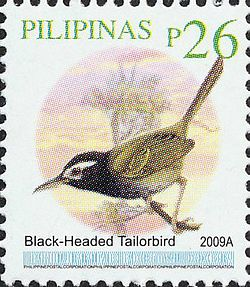 Orthotomus nigriceps 2009 stamp of the Philippines.jpg