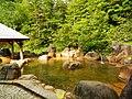Osakacho Ochiai, Gero, Gifu Prefecture 509-3111, Japan - panoramio (25).jpg