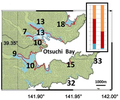 Otsuchi Inundation areas of the 2011 Great East Japan Earthquake Ando et al 2013.png