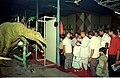 Oviraptor - Dinosaurs Alive Exhibition - Science City - Calcutta 1995 June-July 097.JPG