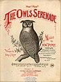 OwlsSerenade.jpeg
