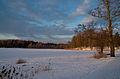 Pühajärv talvel 2013.jpg