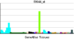 PBB GE BMP2K 59644 at tn.png