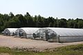 PHHI greenhouse complex.JPG