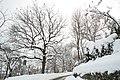 Paesaggio invernale.JPG
