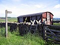 Paint your wagon - geograph.org.uk - 839823.jpg