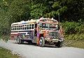Panama Bus - Flickr - gailhampshire.jpg