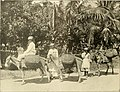 Panama and the canal in picture and prose (1913) (14780810364).jpg