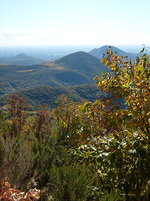 Ausblick Vom Monte Venda (601m) über Die Hügel