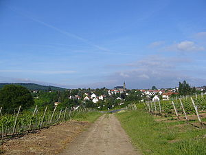 Weiler bei Bingen - Panorama of Weiler bei Bingen