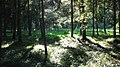 Parc Dendrologic - Arcalia (1424995268).jpg