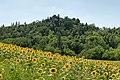 Parco Fola - Albinea, Reggio Emilia, Italy - July 7, 2020.jpg