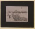 Park Club toboggan slide, Montreal (HS85-10-16978) original.tif