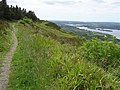 Path above Lough Erne - geograph.org.uk - 835767.jpg